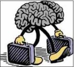 cerebro11.jpg